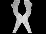 Logo Welscharts